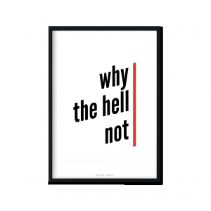"""why not"" 