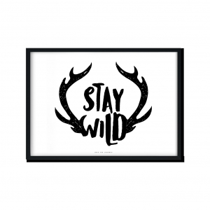 """Stay Wild"" 