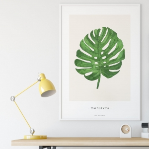 """monstera"" Plakat"